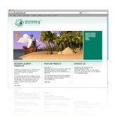 Website / Content Managment System